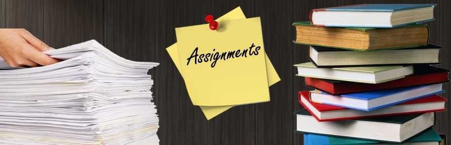 Your assignments
